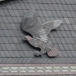Greifvogel - Schieferkunst